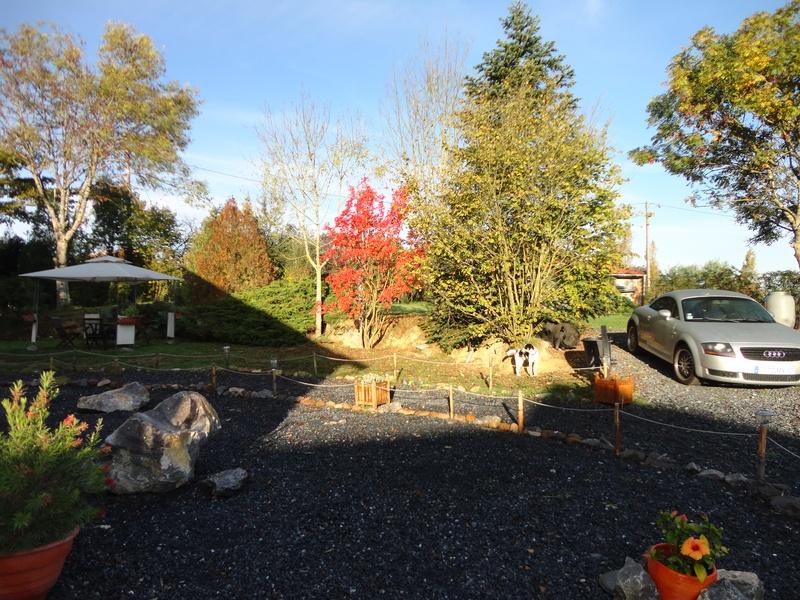The garden in the Autumn sun