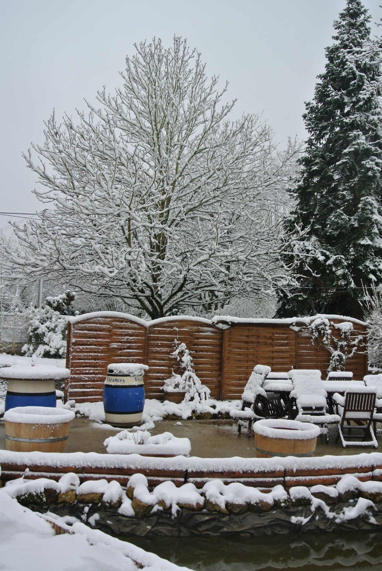A snowy garden this morning!!